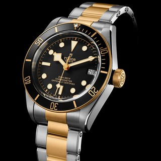 Baselworld 2017: Tudor Heritage Black Bay S&G
