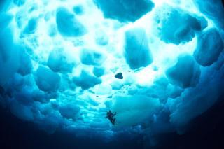 "Expedíció ""Deepsea Under The Pole by Rolex"""